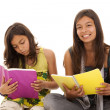 Two young student sisters — Stock Photo #8659120