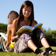 Royalty-Free Stock Photo: Reading at the park