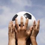 Soccer cup winner — Stock Photo #8667877