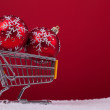 Shopping season — Lizenzfreies Foto
