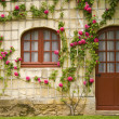 Flower House - Stock Photo