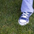 Feet on Grass — Stock Photo #8669496