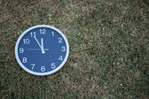 Wall clock in the grass — Stock Photo