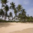 Beach at the paradise — Stock Photo