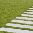 Stock Photo: Diagonal Path