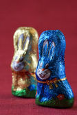 Easter bunnys — Foto Stock