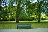 Beautiful park — Stock Photo