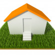 3D House on grass — Stock Photo