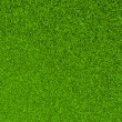 Stock Photo: Beautiful green grass texture