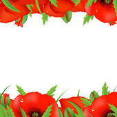 Red Poppy Border — Stock Vector