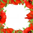 Royalty-Free Stock Vector Image: Red Poppy Frame