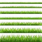 Conjunto de hierba verde — Vector de stock