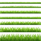 Groen gras set — Stockvector