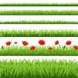 Green Grass Set With Red Poppy — Stock Vector
