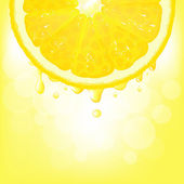 Lemon Segment With Juice And Bokeh — Stock Vector