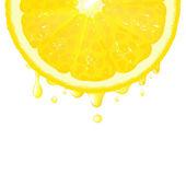 Lemon Segment With Juice — Stock Vector