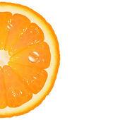 Half Of Orange — Stock Vector