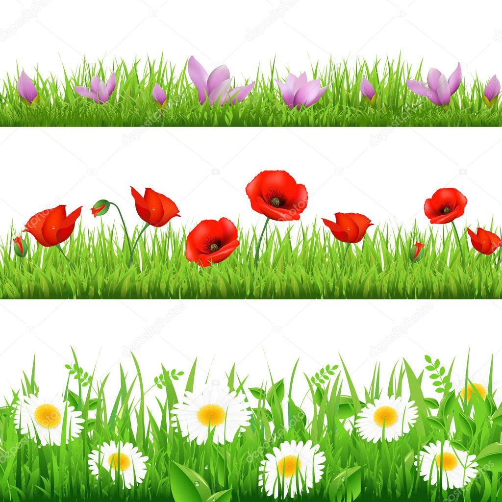 3 Flower Border With Grass, Isolated On White Background, Vector Illustration — Stock Vector #9994539