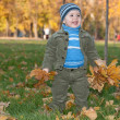 Toddler walking in the autumn park — Stock Photo #8144322