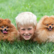 Smiling boy with two dogs — Stock Photo