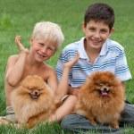 Two boys plus two pets — Stock Photo