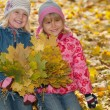 Royalty-Free Stock Photo: Smiling little girls with autumn leaves