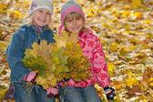 úsměv holčičky s podzimní listí — Stock fotografie