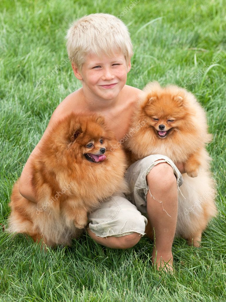 Smiling boy with two dogs are sitting on the grass  Stock Photo #8144329