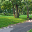 Stock Photo: Walkway in New-York Central Park