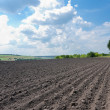 Plowed field under cloudy sky - Stock Photo