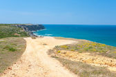 Dirt road to the Atlantic ocean — Stock Photo