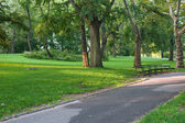 Walkway in the New-York Central Park — Stock Photo