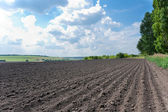 Plowed field under cloudy sky — Stock Photo