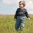 Toddler in the summer meadow - Stock Photo