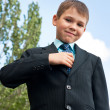 Stock Photo: Tidy boy in suit