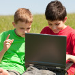 Royalty-Free Stock Photo: Two boys with laptop on the meadow