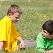 Conversation of two boys on the grass - Stock Photo