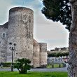 Castle Ursino of Catania - Foto de Stock