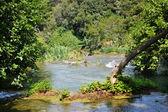 Prachtige watervallen van krka sibenik — Stockfoto