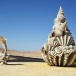 Ras Mohammed, Sinai Desert — Stock Photo