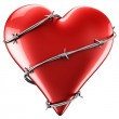 Heart with barbed wire — Stock Photo #8284181