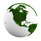 Grass earth - north america — Stock Photo