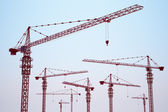 Tower cranes — Stock Photo