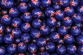 New Zealandic Soccer balls — Stock Photo