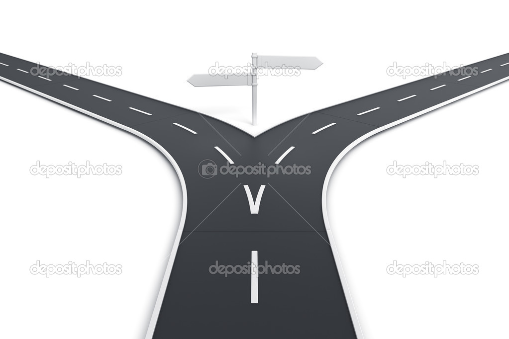 3d rendering of a road splitting with road blank signs — Stock Photo #8288719