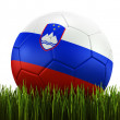 Soccerball in grass — Stock fotografie