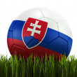 Soccerball in grass — ストック写真