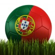 Soccerball in grass — Foto Stock