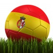 Soccerball in grass — Stock Photo #8292305