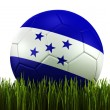 Soccerball in grass - Photo